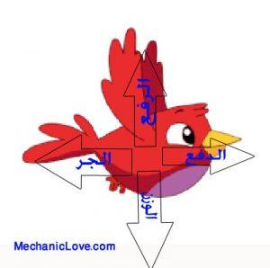 القوى المؤثرة على طائر